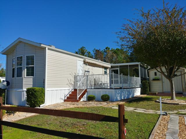 3013 NE 104th Avenue, Silver Springs, FL 34488 (MLS #548720) :: Bosshardt Realty