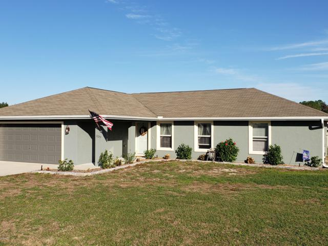 12259 SE 100th Court, Belleview, FL 34420 (MLS #548747) :: Realty Executives Mid Florida