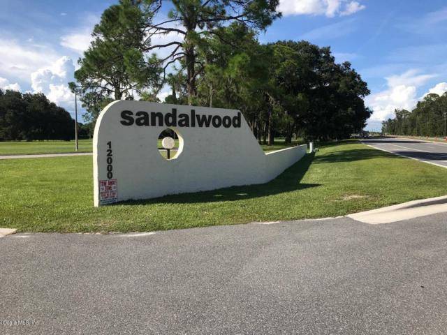 22101 Sandalwood Drive, Wildwood, FL 34785 (MLS #548960) :: Thomas Group Realty