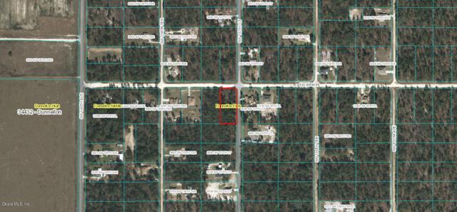 CORNER SW 85TH Pl & Sw 137TH Court, Dunnellon, FL 34432 (MLS #549039) :: Pepine Realty