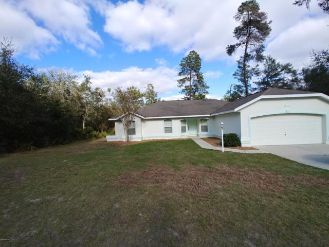 5117 SW 165th Street Road, Ocala, FL 34473 (MLS #549058) :: Pepine Realty