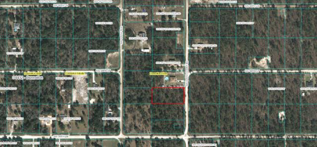 S 1/2 Lot2 SW 125th Court Road, Dunnellon, FL 34432 (MLS #549079) :: Pepine Realty