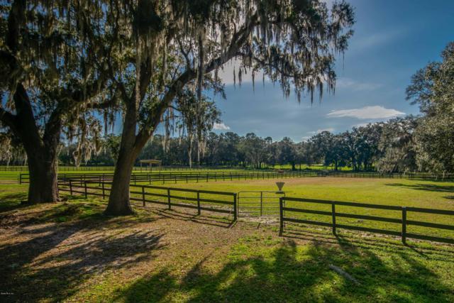 8200 NW Hwy 225A, Ocala, FL 34482 (MLS #549137) :: Realty Executives Mid Florida