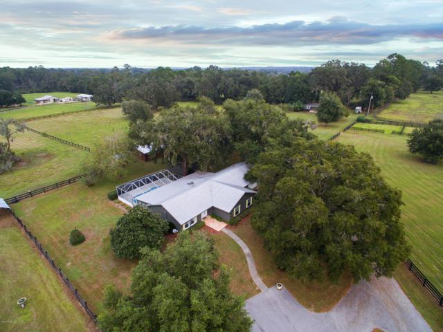 15353 NW 112th Place Road, Morriston, FL 32668 (MLS #549153) :: Thomas Group Realty