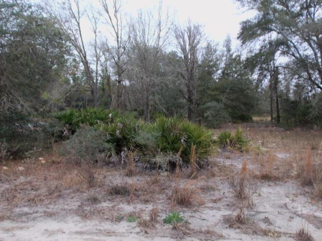 LOT 12 SW South Hill Court, Dunnellon, FL 34431 (MLS #549164) :: Pepine Realty