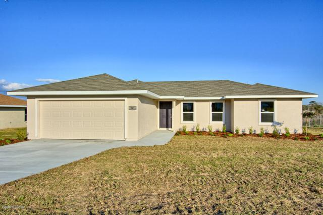 10073 SE 125th Street, Belleview, FL 34420 (MLS #549180) :: Realty Executives Mid Florida