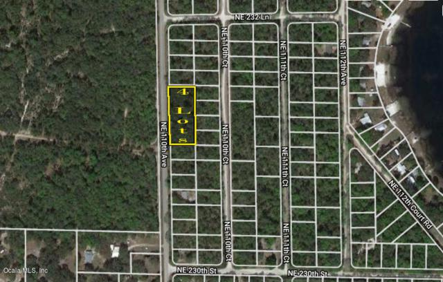 TBD NE 110th Avenue, Fort Mccoy, FL 32134 (MLS #549184) :: Pepine Realty