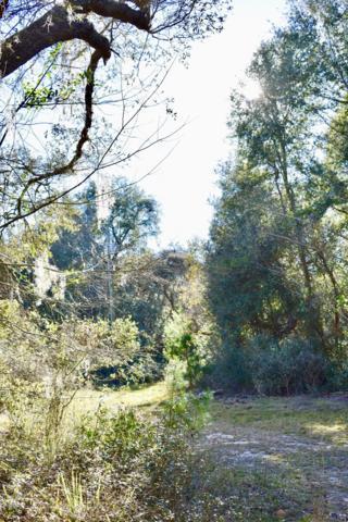 000 NE 160th Avenue Road, Fort Mccoy, FL 32134 (MLS #549185) :: Pepine Realty