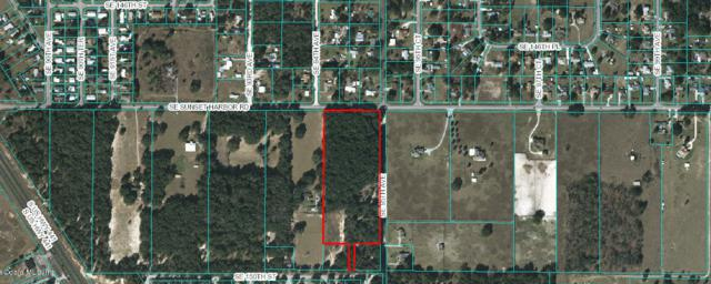 9450 Sunset Harbor Road, Summerfield, FL 34492 (MLS #549209) :: Realty Executives Mid Florida