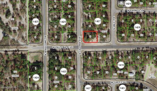 10515 N Caldera Avenue, Citrus Springs, FL 34433 (MLS #549310) :: Realty Executives Mid Florida