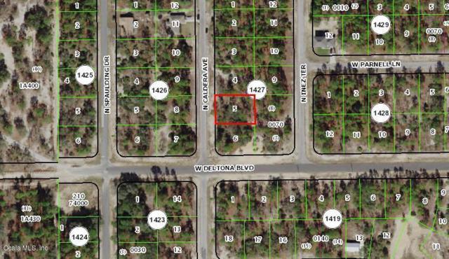10535 N Caldera Avenue, Citrus Springs, FL 34433 (MLS #549311) :: Realty Executives Mid Florida