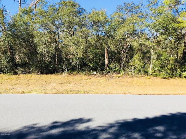 0 SW 29 Terr Road, Ocala, FL 34473 (MLS #549320) :: Realty Executives Mid Florida