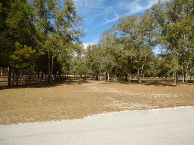 000 NE 138 Lane, Newberry, FL 32669 (MLS #549324) :: Realty Executives Mid Florida