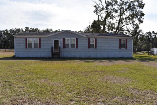 450 NE 155th Street Road, Citra, FL 32113 (MLS #549358) :: Pepine Realty