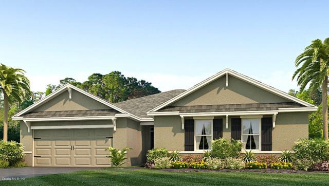 3918 SE 99th Street, Belleview, FL 34420 (MLS #549468) :: Bosshardt Realty