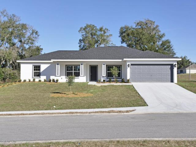 11 NW 42nd Place, Ocala, FL 34475 (MLS #549479) :: Realty Executives Mid Florida