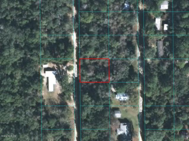 00 NE 146 Court, Fort Mccoy, FL 32134 (MLS #549561) :: Pepine Realty