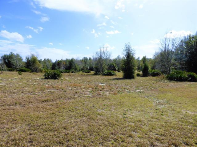 7096 W Silverleaf Lane, Dunnellon, FL 34433 (MLS #549573) :: Realty Executives Mid Florida