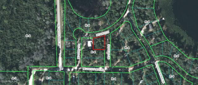 10390 NE 224th Place Road, Fort Mccoy, FL 32134 (MLS #549635) :: Realty Executives Mid Florida