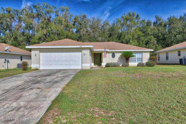 4585 NW 48th Lane, Ocala, FL 34482 (MLS #549810) :: Bosshardt Realty