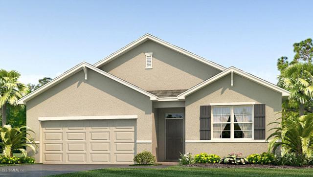 3850 SE 99TH Street, Belleview, FL 34420 (MLS #549862) :: Bosshardt Realty