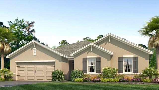 3902 SE 99th Street, Belleview, FL 34420 (MLS #549863) :: Bosshardt Realty