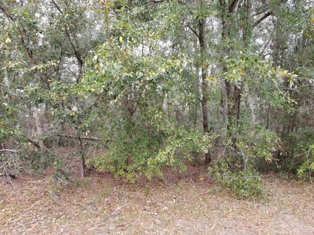 0 NE 7th Loop, Silver Springs, FL 34488 (MLS #549904) :: Bosshardt Realty