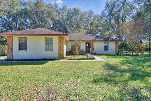 10 Carry Back Road, Ocala, FL 34482 (MLS #549905) :: Pepine Realty