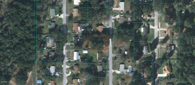 2916 NE 24th Court, Ocala, FL 34479 (MLS #549945) :: Pepine Realty