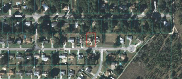 4575 SE 59th Street, Ocala, FL 34470 (MLS #549993) :: Realty Executives Mid Florida