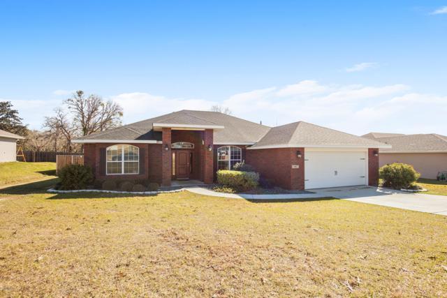 1067 SE 65th Circle, Ocala, FL 34472 (MLS #550086) :: Bosshardt Realty