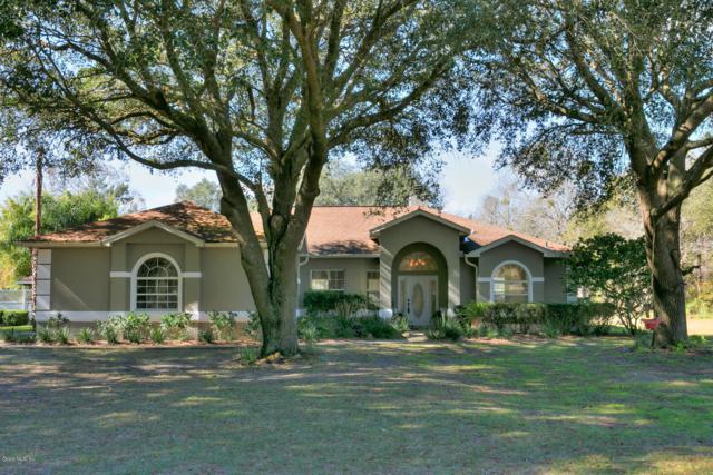 1679 NW 114th Loop, Ocala, FL 34475 (MLS #550281) :: Bosshardt Realty
