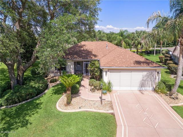 8997 SE 178th Muirfield Place, The Villages, FL 32162 (MLS #550406) :: Realty Executives Mid Florida