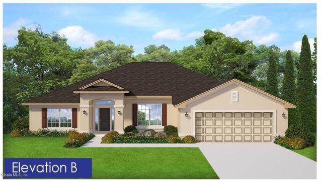 4029 SE 98th Place, Belleview, FL 34420 (MLS #550520) :: Bosshardt Realty