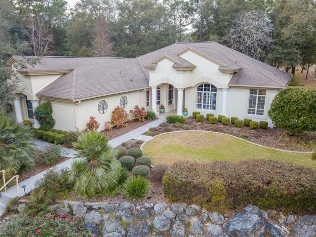 9490 N Wayland Avenue, Citrus Springs, FL 34434 (MLS #550533) :: Bosshardt Realty