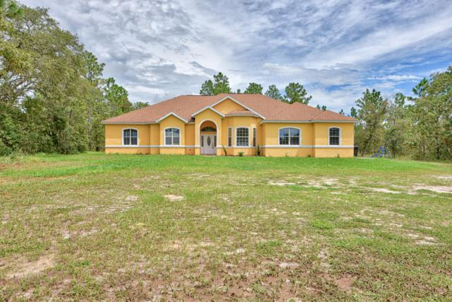 12211 SW 80th Street, Dunnellon, FL 34432 (MLS #550634) :: Realty Executives Mid Florida