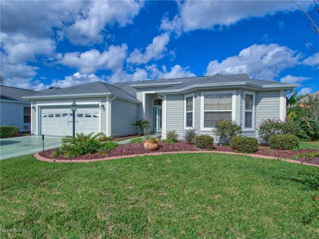 3457 Bloomington Place Place, The Villages, FL 32162 (MLS #550819) :: Realty Executives Mid Florida