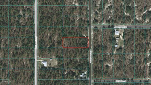 Lot 12 SW Persimmon Lane, Dunnellon, FL 34431 (MLS #550869) :: Bosshardt Realty