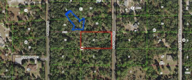 8470 N Elmtree Avenue, Crystal River, FL 34428 (MLS #550917) :: Bosshardt Realty