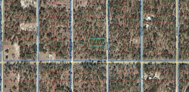 Lot 12 SE 135th Ct, Dunnellon, FL 34431 (MLS #550924) :: Bosshardt Realty