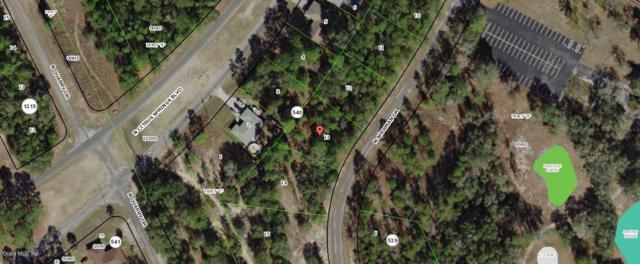 10340 N Sherman Drive, Citrus Springs, FL 34434 (MLS #550963) :: Bosshardt Realty