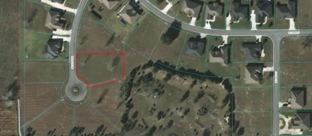 0 SE 61 Terrace, Lot 12, Belleview, FL 34420 (MLS #550989) :: Pepine Realty