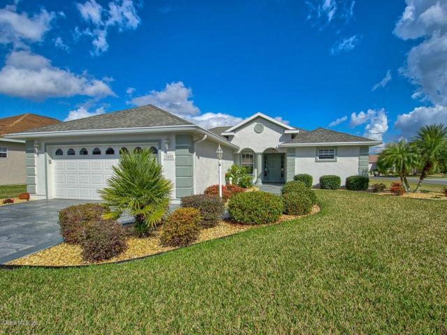 12001 SE 175th Loop, Summerfield, FL 34491 (MLS #550992) :: Realty Executives Mid Florida