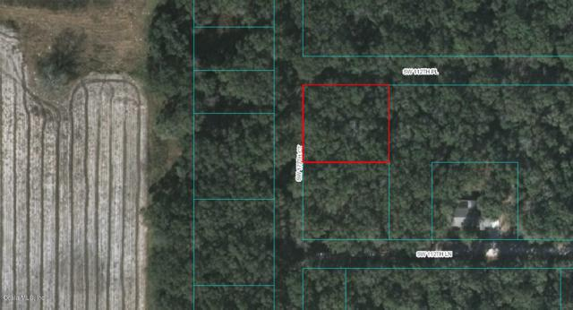 0 SW 112TH PLACE Place, Dunnellon, FL 34432 (MLS #551019) :: Bosshardt Realty