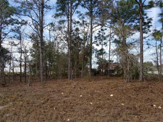 TBD SW 130th Lane Road, Ocala, FL 34473 (MLS #551148) :: Thomas Group Realty