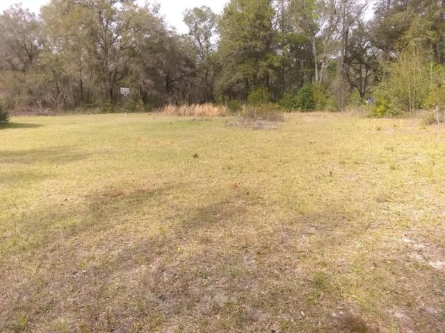 13843 SE Highway 464C, Ocklawaha, FL 32179 (MLS #551289) :: Realty Executives Mid Florida