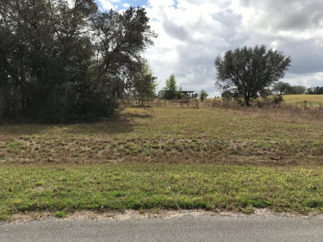 00 Malauka Loop, Ocklawaha, FL 32179 (MLS #551316) :: Realty Executives Mid Florida