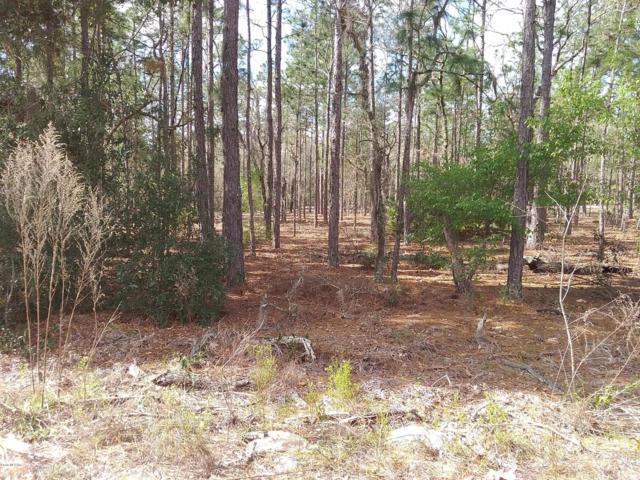 9382 N Pineview Way, Citrus Springs, FL 34434 (MLS #551352) :: Bosshardt Realty