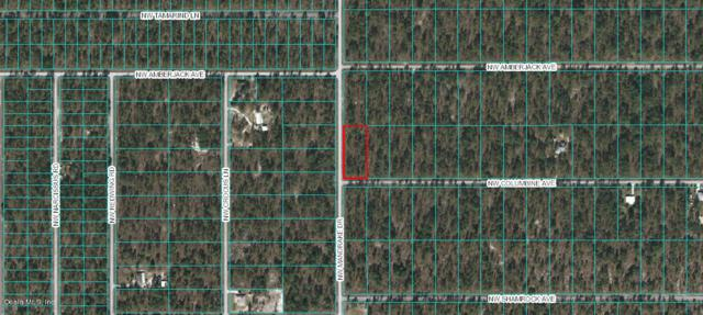 00 NW Columbine Avenue, Dunnellon, FL 34431 (MLS #551417) :: Realty Executives Mid Florida