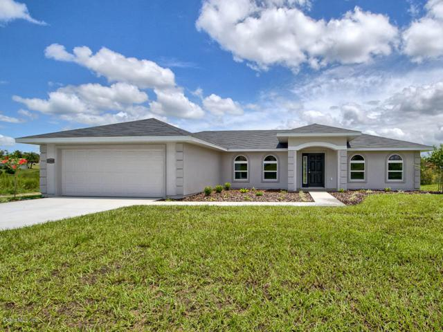 9697 SE 157th Lane, Summerfield, FL 34491 (MLS #551469) :: Realty Executives Mid Florida